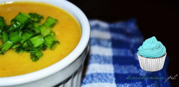 Zupa – krem porowy