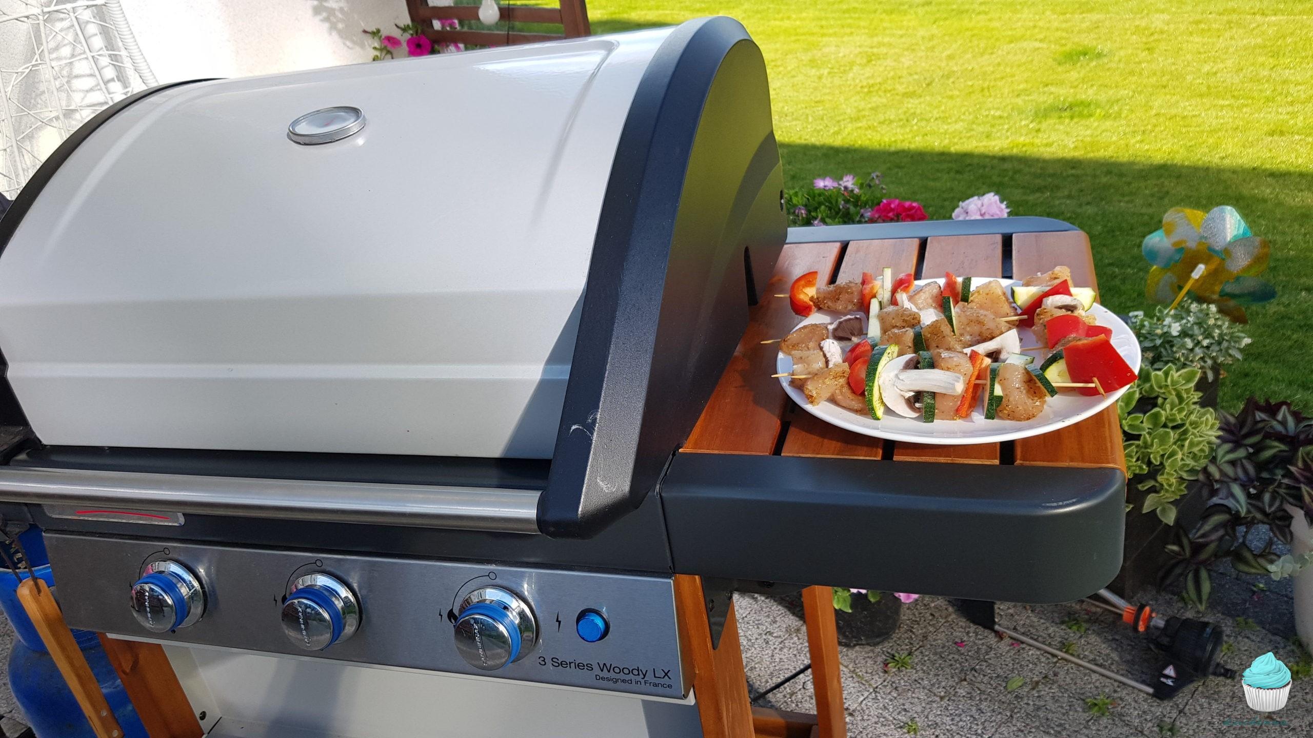 Jaki grill gazowy wybrać dla swojej rodziny?
